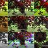 screenshot_2013-06-01-09-10-14