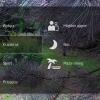 screenshot_2013-06-01-09-11-59