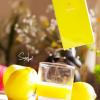 sony-xperia-z1_limonka_4