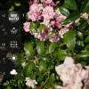 Sony Xperia Z3+ - aplikacja aparatu